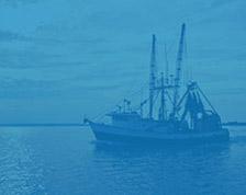 Gestion durable des ressources marines