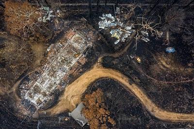 Bush fire destruction