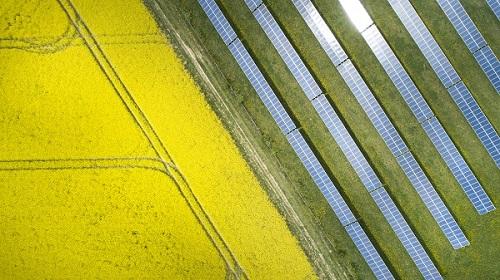 champ de panneaux photovoltaïques