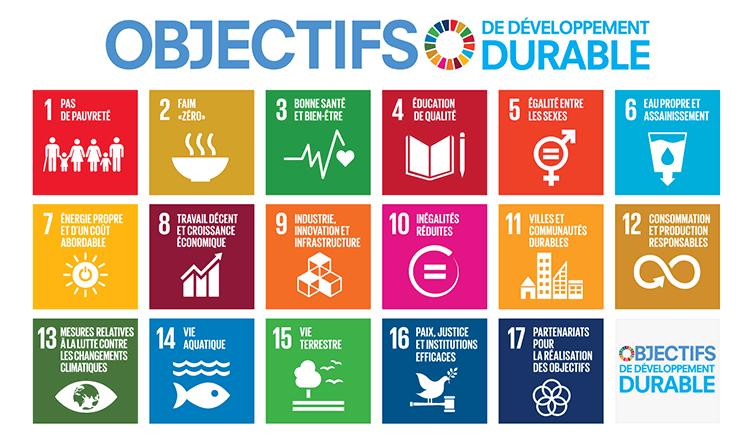 Objectifs de développement durable ONU