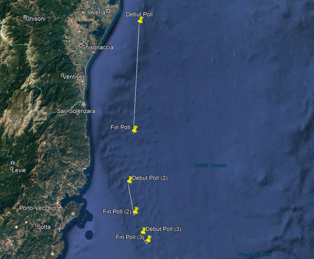 Oil spill off Corsica
