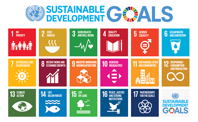 Sustainable development goals United Nations
